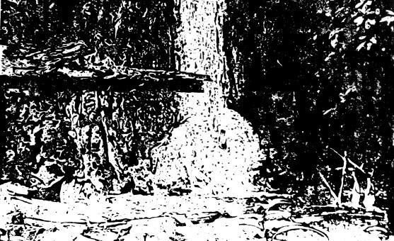 falkenstein_banner